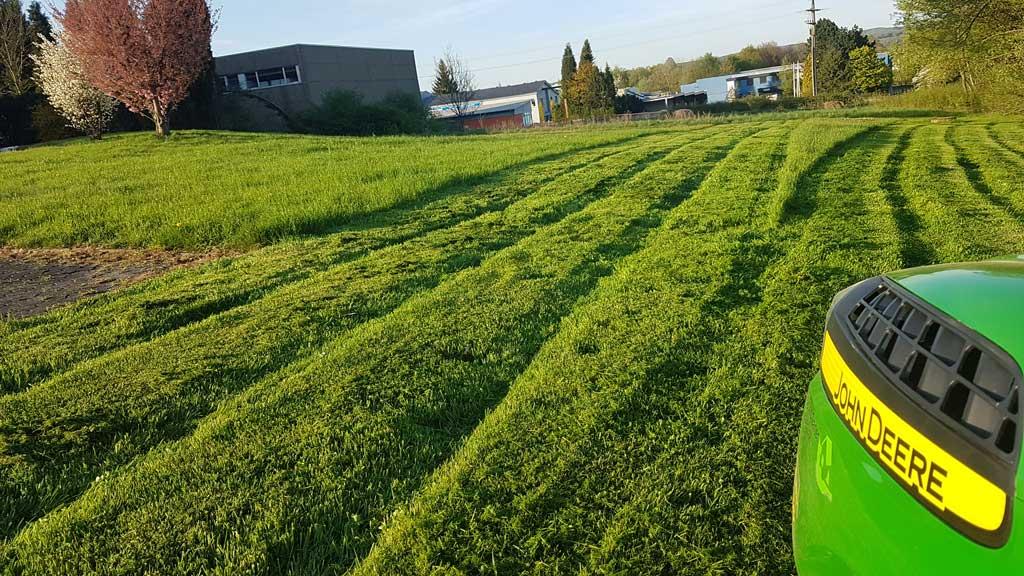 Rasenpflege mit Haus und Garten Westerwald